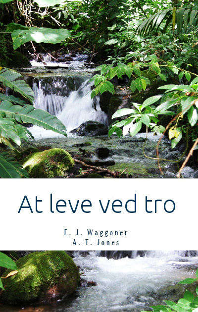 Book Cover: At leve ved tro